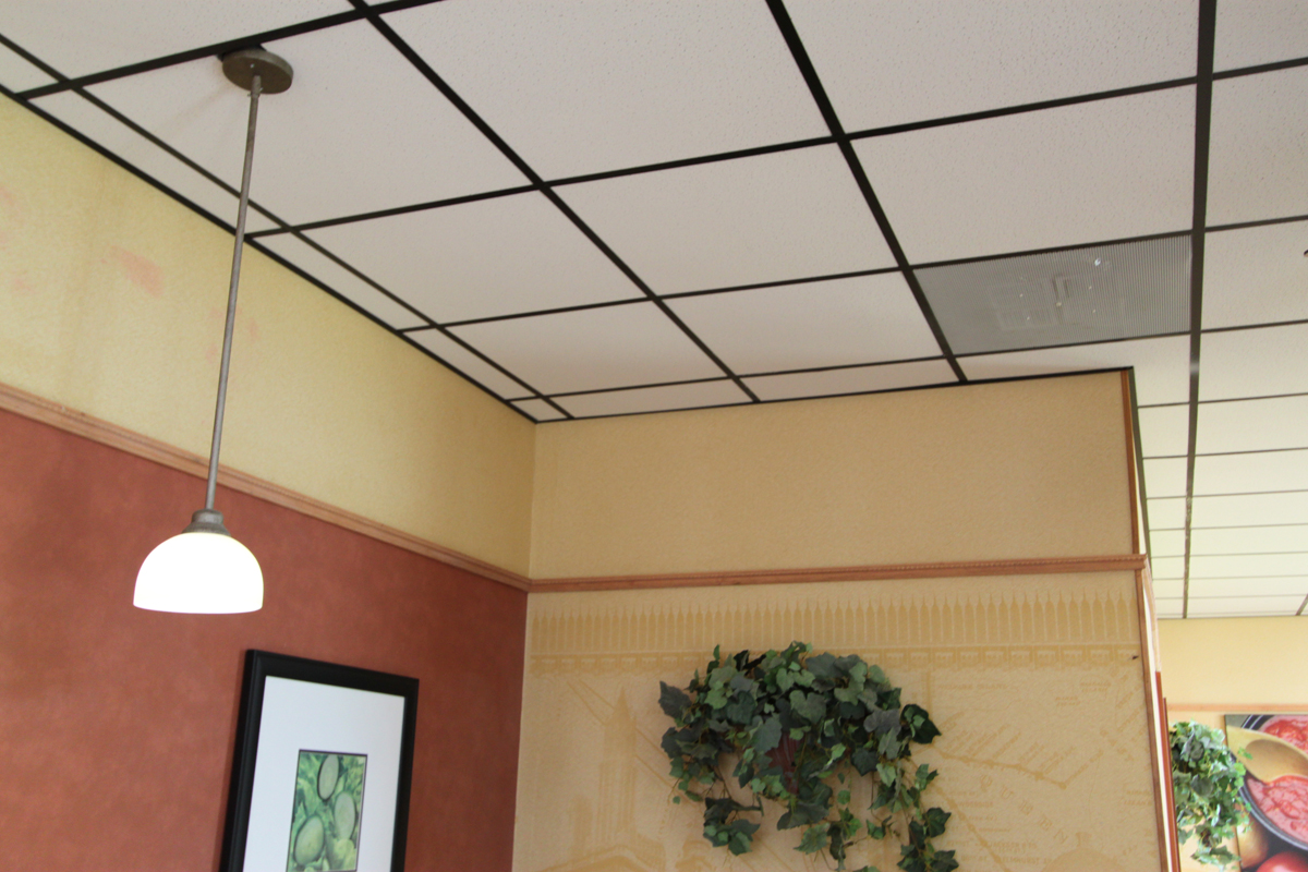Cleaning Dining Ceiling Tiles Houston Tx